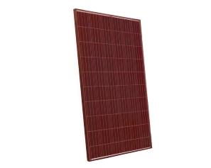 Modulo SolarCall policristallino 60 celle rosso