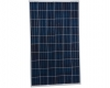 Modulo fotovoltaico Sharp da 245Wp POLI