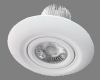 PAC-SGS Ceiling Light